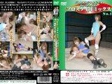 プロスタイルミックス No.16